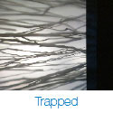 Trapped Series Pocket Doors